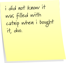 i did not know it was filled with catnip when i bought it, duo.