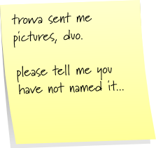 trowa sent me pictures, duo.  please tell me you have not named it...