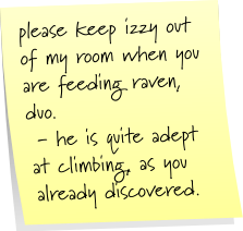 please keep izzy out of my room when you are feeding raven, duo. - he is quite adept at climbing, as you have already discovered.